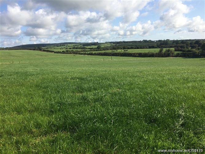 Main image for Site C, Rathduff, Grenagh, Cork