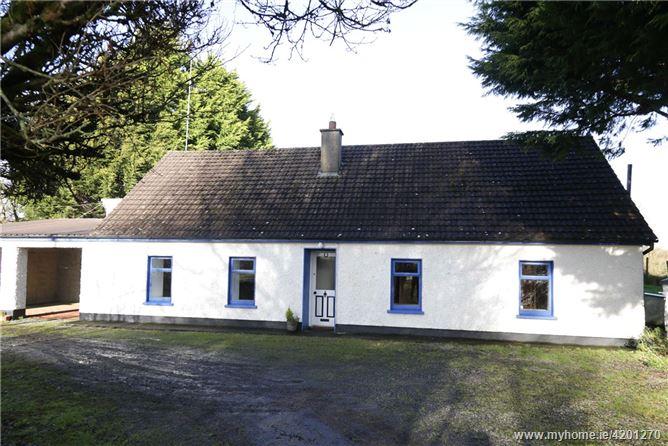 Seraghstown, Kilskyre, Kells, Co. Meath, A82 HY32