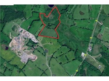 Main image of 18.83 Acres at Newtown, Clonmellon, Meath