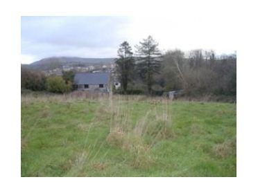 Main image of Newtown, Killaloe, Clare