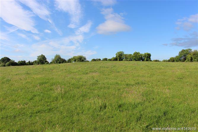 Main image for Drewstown Little, Kells, Meath