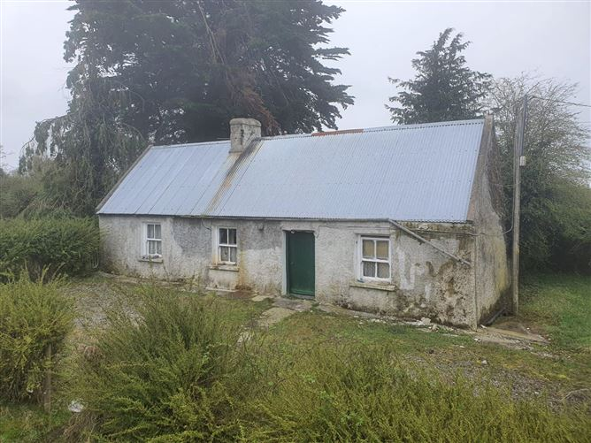 Main image for Lismakeigue, Kiltormer, Ballinasloe, Co. Galway