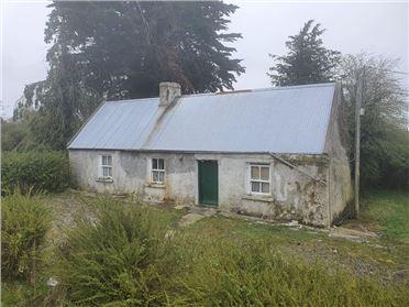 Image for Lismakeigue, Kiltormer, Ballinasloe, Co. Galway