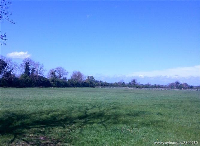 Coolfitch, Hazelhatch, Celbridge, Co. Kildare - Approx 3 acres