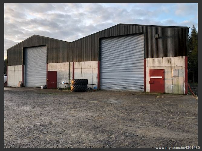 Main image for 2 x 4000 sq unit, Ballybrittas, Laois