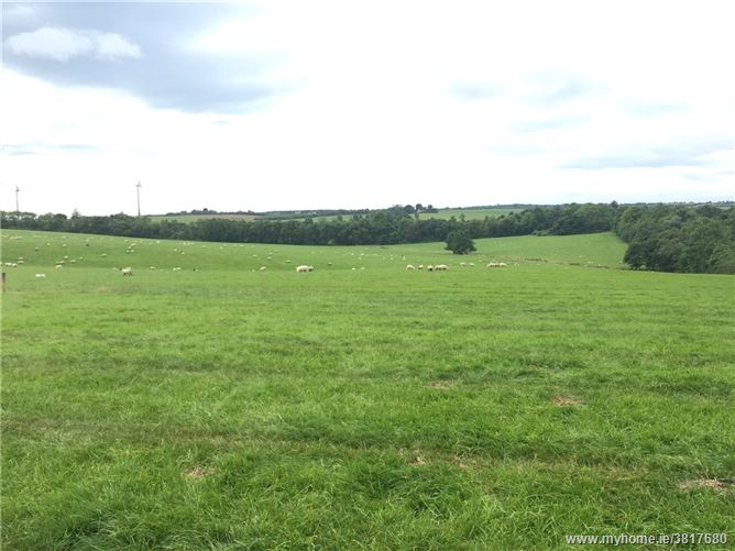 Site At Peppardscastle, Kilmuckridge, Gorey, Co. Wexford