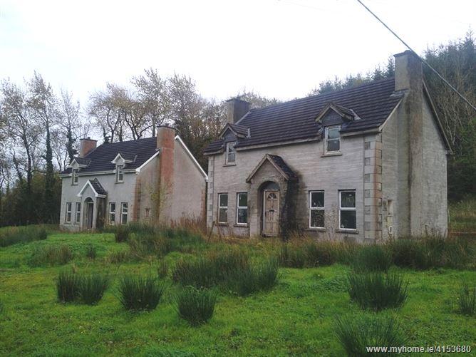 Druminshingore, Newtowngore, Leitrim