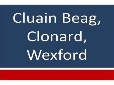 Photo of Cluain Beag, Wexford Town, Wexford