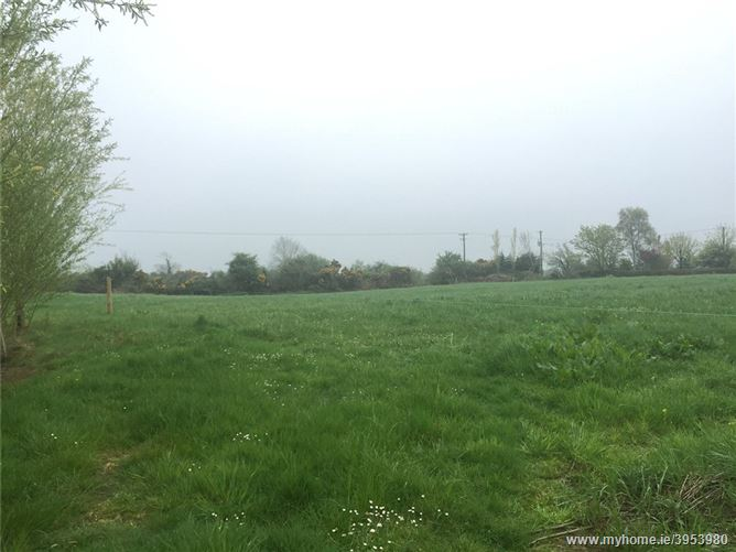 Land At Ballyadam, Kilmuckridge, Gorey, Co Wexford