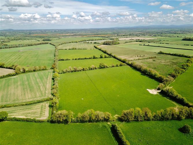 Main image for c. 93 Acres at Ballyvarney, Nurney, Kildare