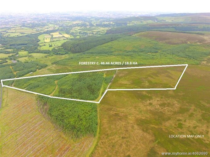 Mature Forestry Plantation c. 46.4 Acres/ 18.8 HA., Killakee, Rathfarnham, Dublin 16
