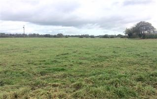5.5 ACRES at ADDINSTOWN, Delvin, Westmeath