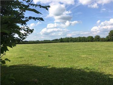 Main image of Ballinabarna c. 29 Acres, Athy, Kildare