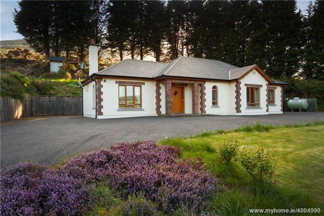 Sliabh Ana, The Old Road, Annagh Gap, Gorey, Co. Wexford
