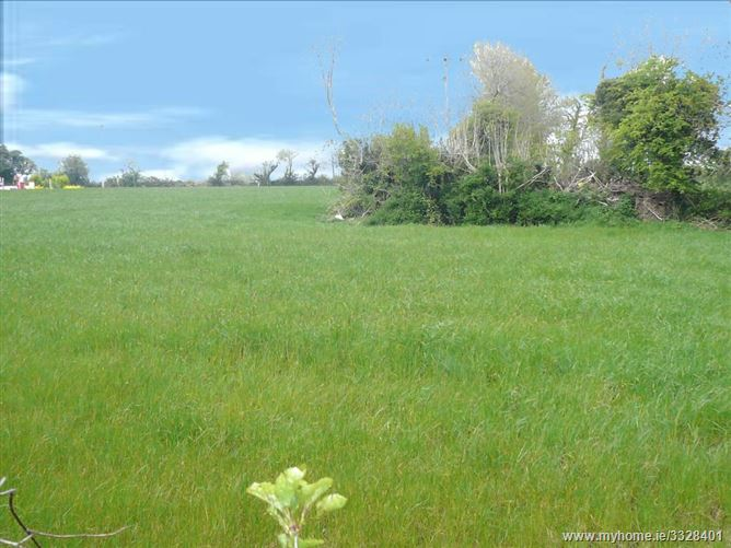 Coolnaveagh, Gorey, Wexford
