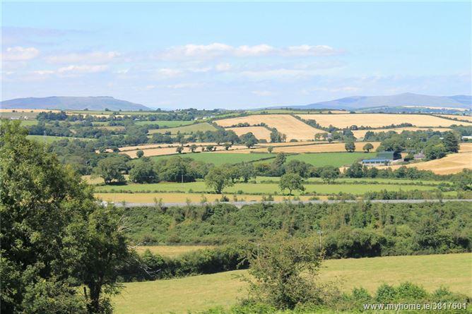 Site, Ballyminaun, Gorey, Co. Wexford