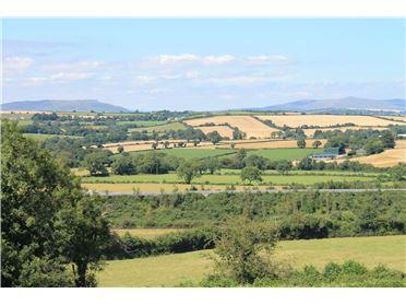 Photo of Site, Ballyminaun, Gorey, Co. Wexford
