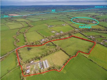 Main image of Agricultural Lands of c.8.04ha (c.19.87ac) at Rathfeigh, Co Meath, Ashbourne, Meath