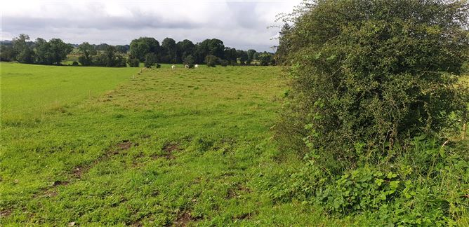 Main image for .27 Hectare / .66 Acre,Dalgin,Milltown,Tuam,Co. Galway