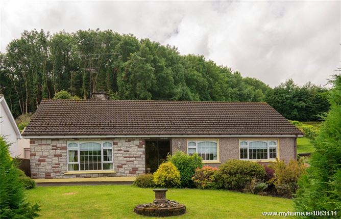 Photo of 65 Killyconnigan, Monaghan, Co. Monaghan, H18D954
