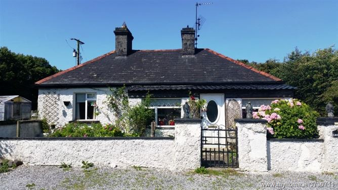 Irishtown, Birr, Co. Offaly