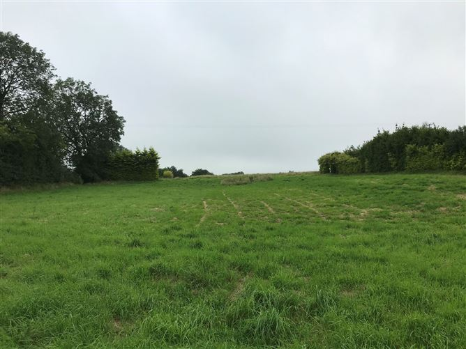 Main image for Land at Fahybeg, Bridgetown, Clare