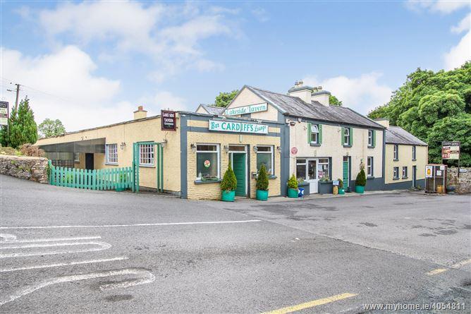 Cardiffs 'Lakeside Tavern', Drumcong, Carrick-on-Shannon, Leitrim