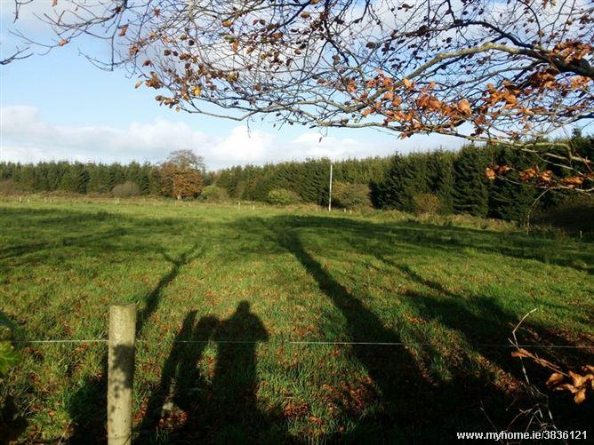 Mullaghmore, Ballyconnell, Cavan