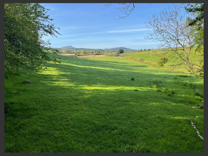 Main image for Land c. 13 Acres, Donard, Wicklow