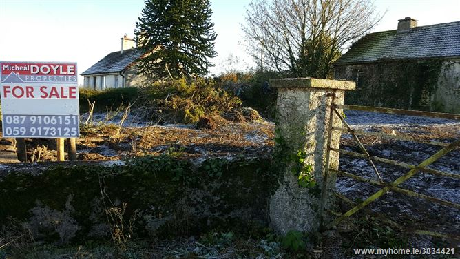 Photo of Shilleagh road Tullow, Tullow, Carlow