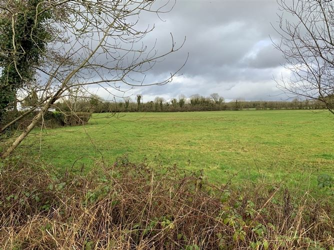 Main image for c. 0.75 Ac / 0.3 Ha, Cappanargid, Rathangan, Co. Kildare
