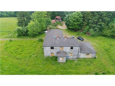 Photo of Dwelling on c. 6.85 Acres at Craanlusky, Bilboa, Carlow Town, Carlow