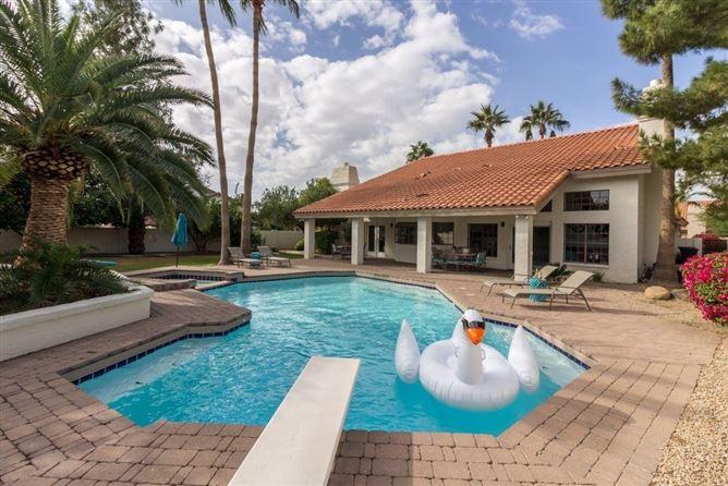 Main image for Silver Pelican,Phoenix,Arizona,USA
