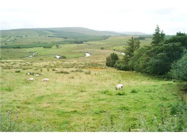 31.13 acres for sale at Bellanamore, Fintown, Co Donegal, Cloghan, Donegal