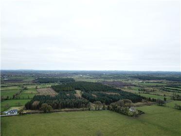 Image for Ardnaragh, Legan, Longford