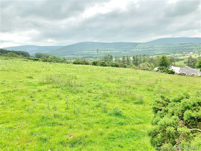 Main image for Site c. 1 acre/0.4 Ha., Subject to Planning Permission, Lockstown, Valleymount, Wicklow
