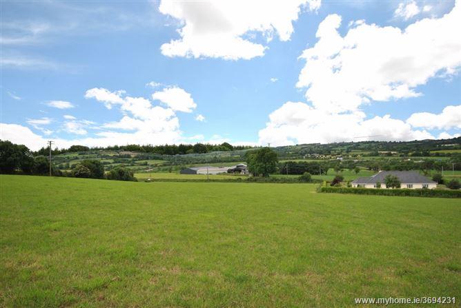 Banogue Hill, Gorey, Wexford