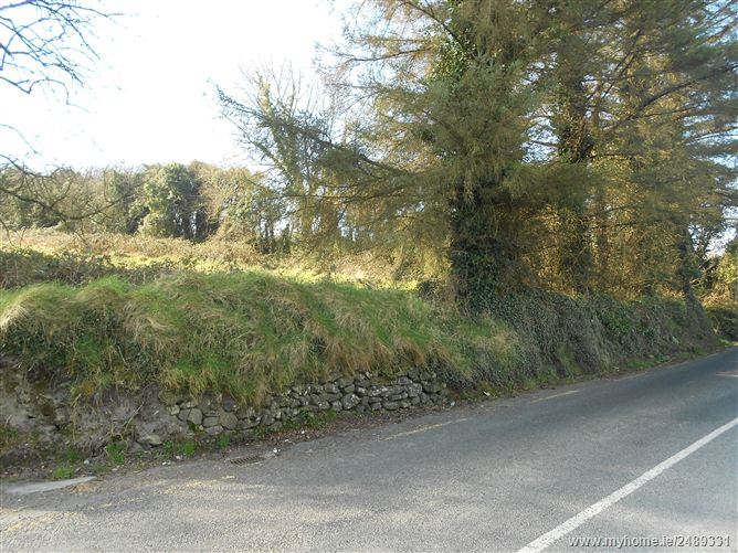 Court House Road, Tulla, Clare