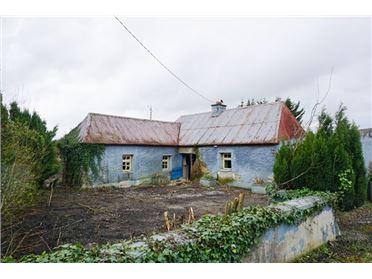 Main image of Walterstown, Nurney, Kildare