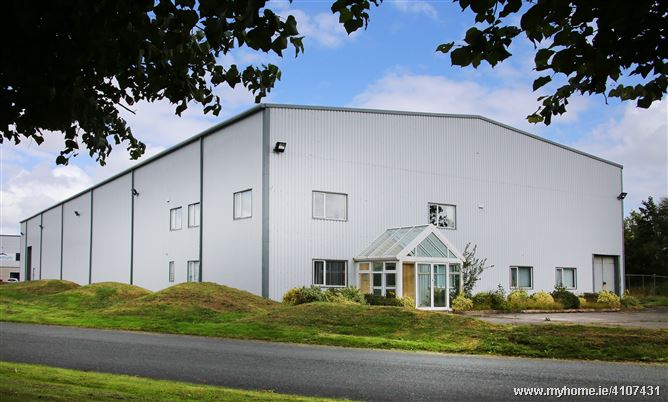 Unit W6 Naas Enterprise Park  Lime Drive, Naas,Co. Kildare, W91 W215