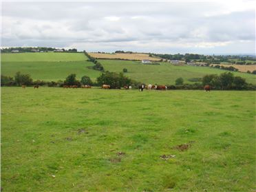 Main image of 158 Acres, Friarhill & Man O'War, Dunlavin, Wicklow