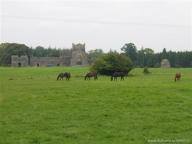 Kilcooley Abbey , Thurles, Co. Tipperary