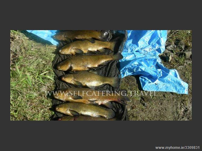 Main image for Hillside House Self Catering,Ballinamuck, Longford