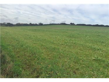 Main image of Land c. 38.5 acres Newtown, Two Mile Water, Wicklow, Wicklow