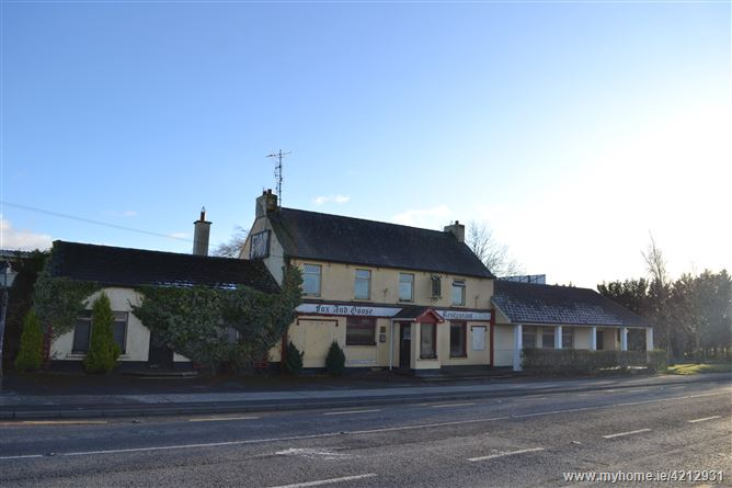 The Famous 'Fox and Goose' Premises, Ballinamona, Clifden, Clara, Kilkenny