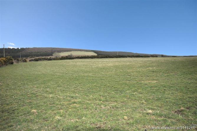 Monalee, Gorey, Wexford