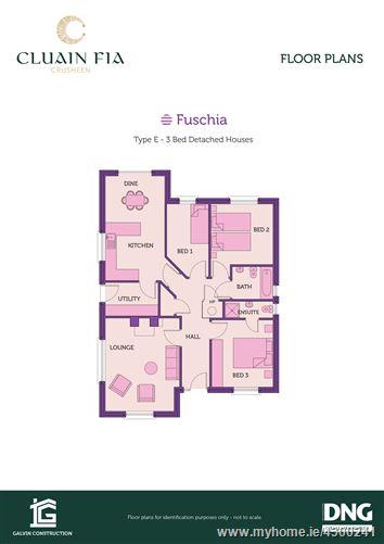 Fuchsia, Cluain Fia , Crusheen, Clare