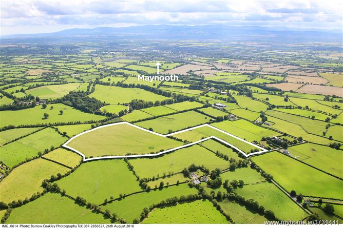 Bryanstown, Maynooth, Co. Kildare - c. 39 acres