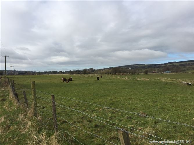 Main image for Lands c.30 acres at Lisheen, Brittas, Wicklow