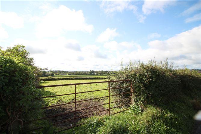 Main image for Lobinstown, Navan, Meath